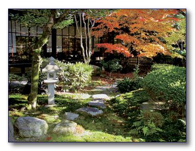 Гармоничный сад