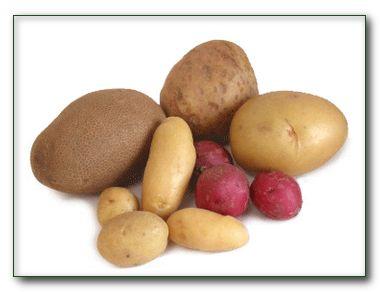 Когда семена картофеля как горох