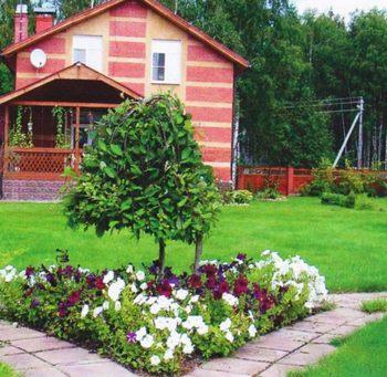 Райские кущи