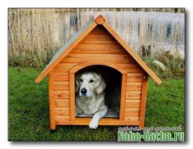 Делаем конуру для собаки