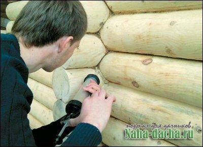 трещины в деревяном доме