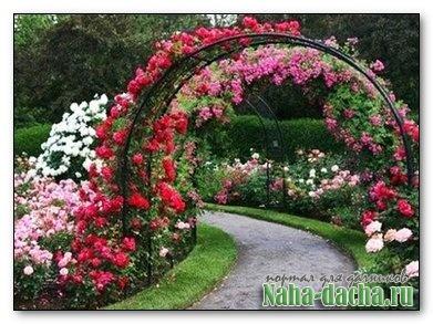 Примеры изготовления садовых арок, шпалер, цветочных клумб