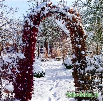 Декоративные садовые арки