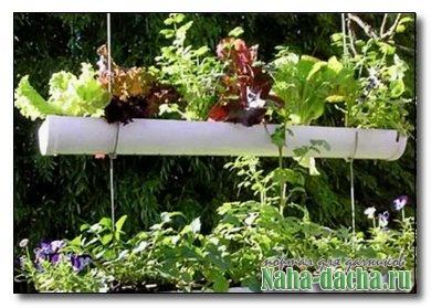 Используем вертикальное пространство для огорода
