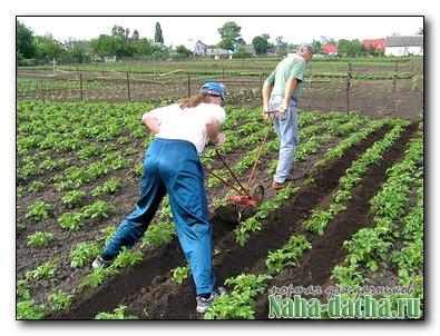 Инструменты и приспособления для обработки земли