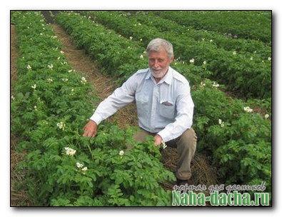Приспособление для посадки картофеля