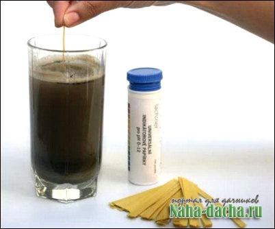 Как определить кислотность почвы