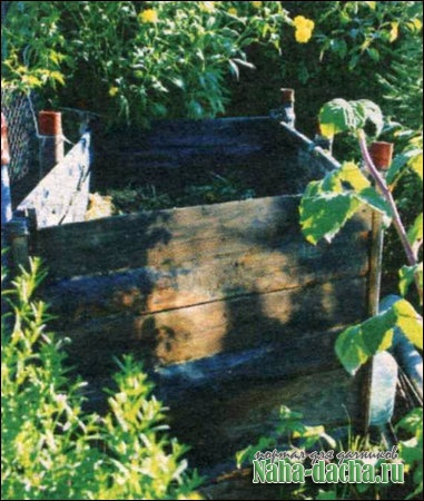 Дыни над компостником