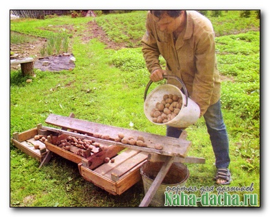 Приспособление для сортировки картофеля