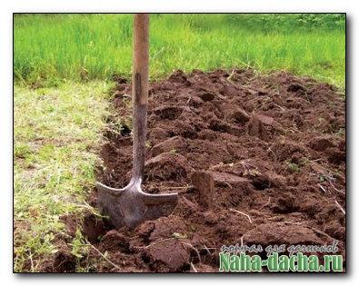 Осенняя обработка взависимости типа почвы