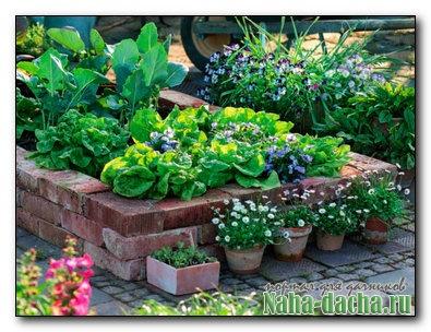 чем огородить огород