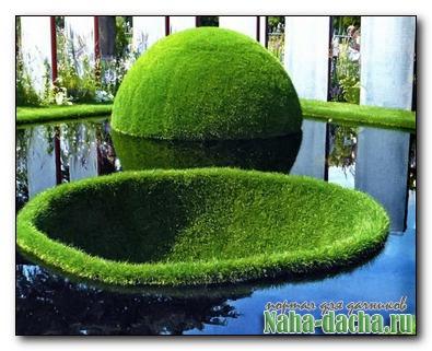 Газон в садовом ландшафте