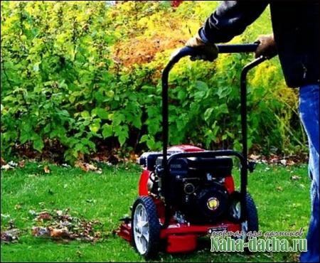 Садовые пылесосы и воздуходувки на даче