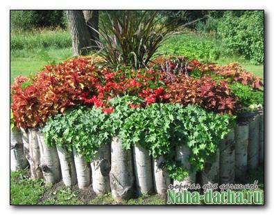 кашпо для уличных цветов из березовых веток