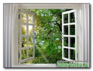 Домик с окнами в сад