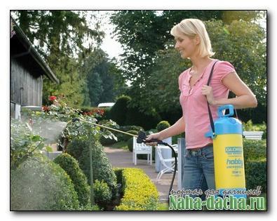 Боремся с вредителями сада