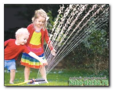 Системы полива: капельный полив, дождевание