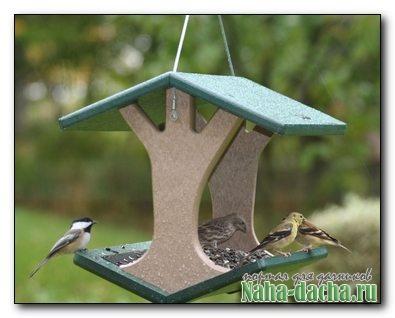 Оригинальные кормушка для птиц своими руками