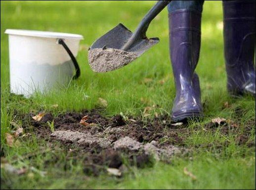 сделать землю плодородной