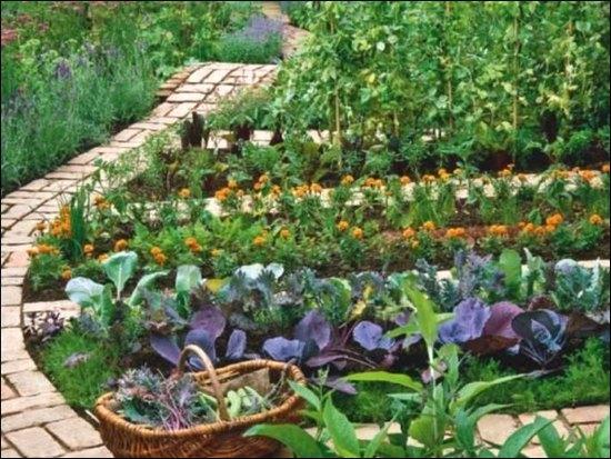 Дорожки в саду: как обустроить в ландшафте сада