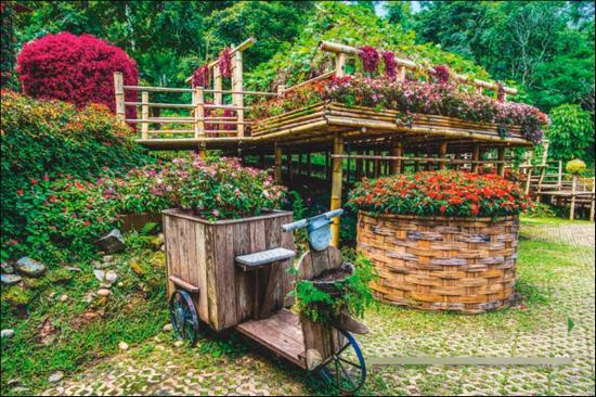 Контейнерный сад