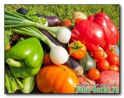 Огородная наука от опытного огородника