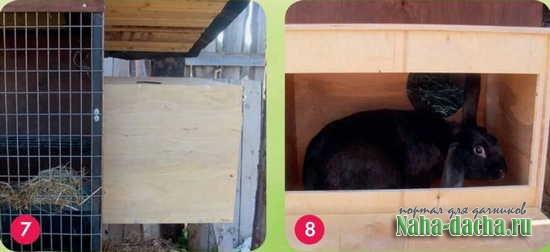 Как оборудовать места содержания кроликов