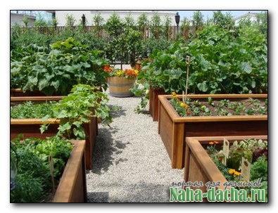 Как будем огород городить?