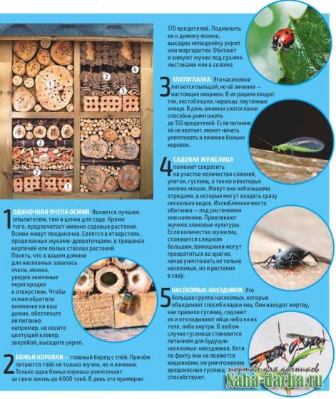 Домик для полєзних насекомых