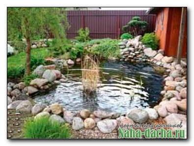 Как обустроить садовый пруд